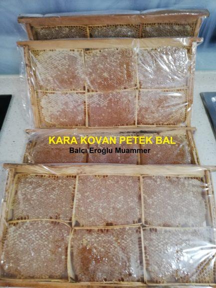 Kara Kovan Petek Bal balcieroglu.com