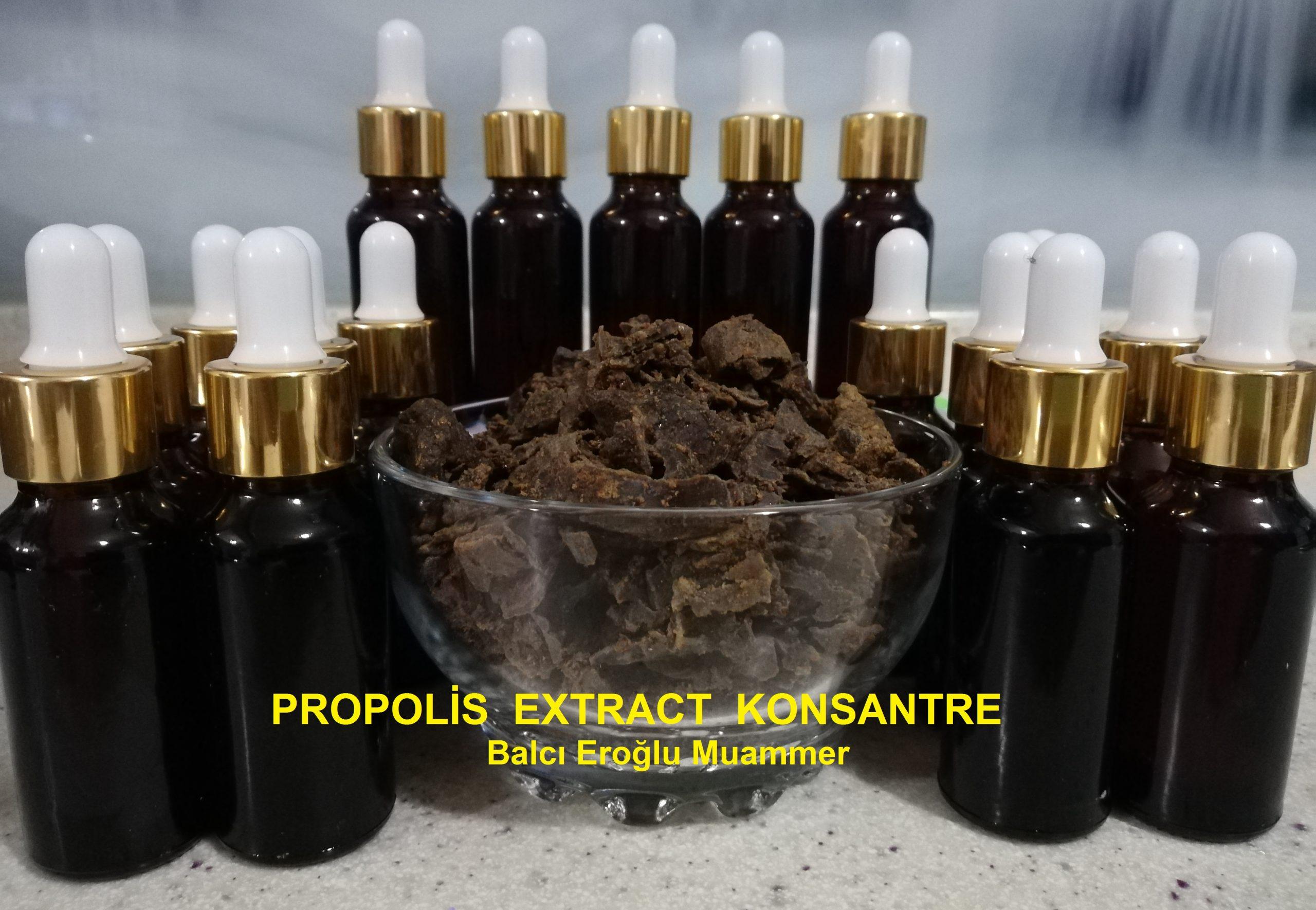 Doğal Propolis Extract balcieroglu.com